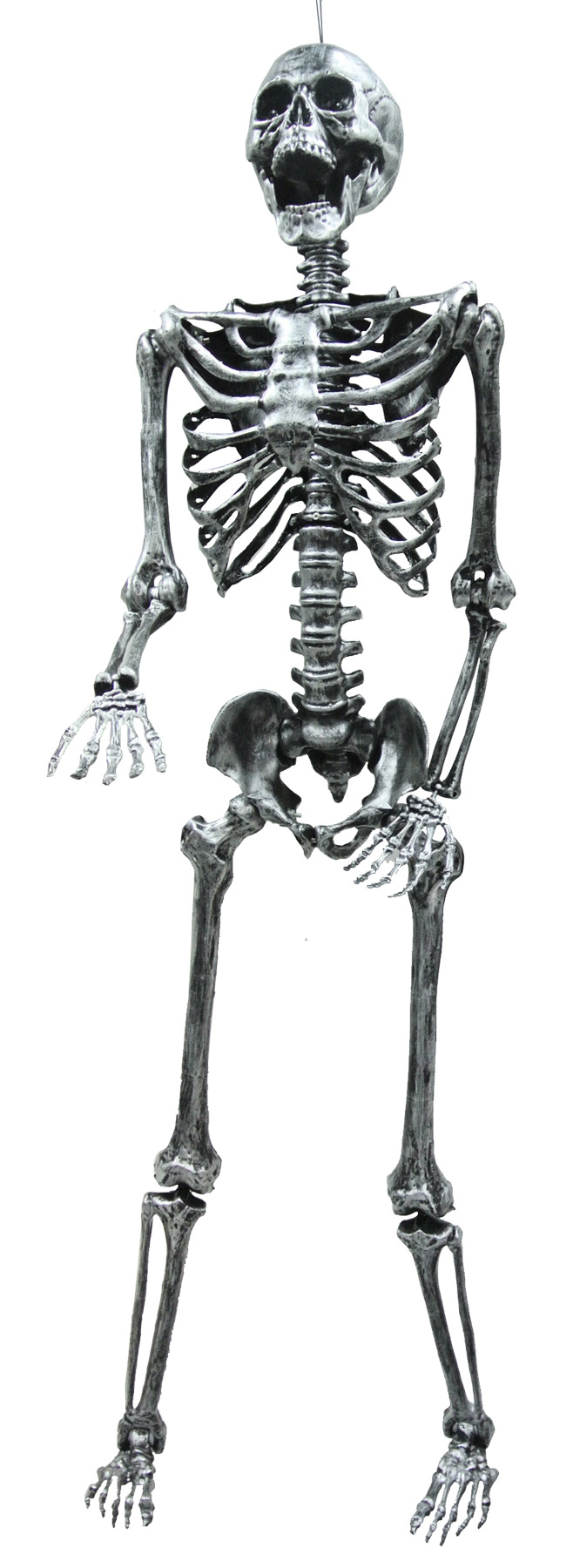 SKELETON STEEL GRAY LGHTUP 5FT