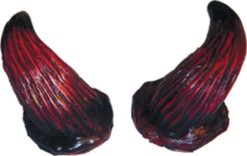 HORNS BULL RED
