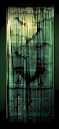 LACE DECOR WINDOW PANEL 40X84