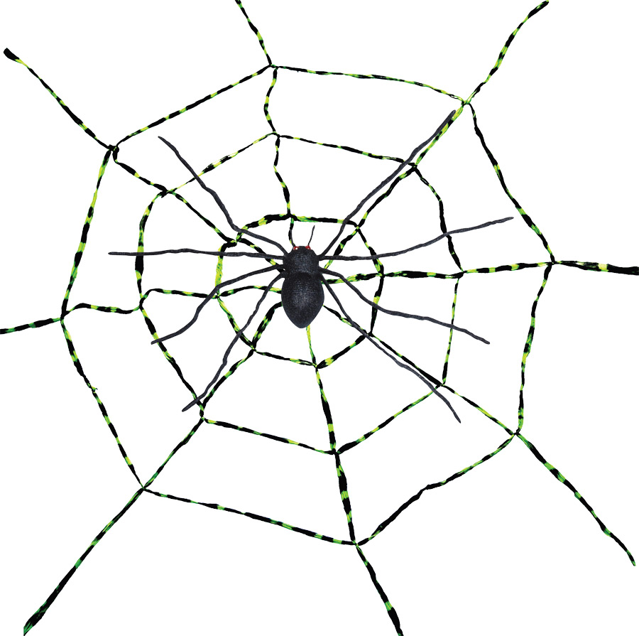 SPIDERWEB WITH SPIDER ASST
