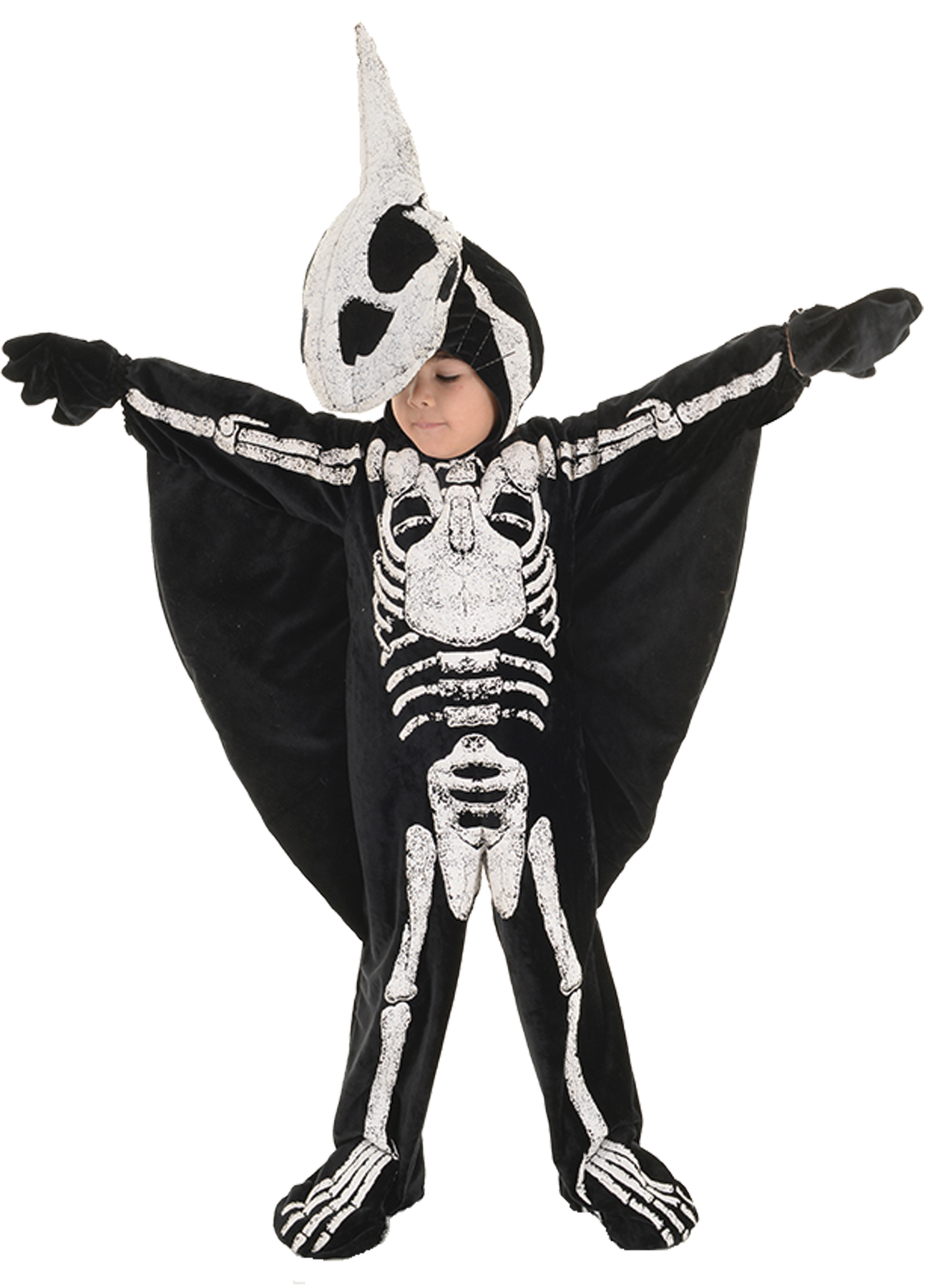 PTERADACTYL TODDLER LG 2T-4T